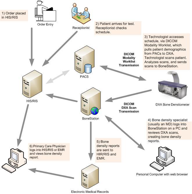 Bonestation System Workflow